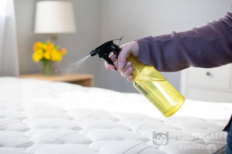 Клопы в квартире как избавиться навсегда в домашних условиях