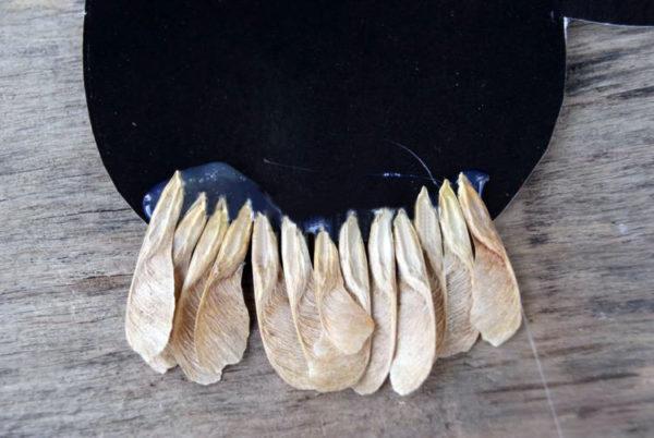 Первый ряд семян-«вертолётиков» на туловище совы